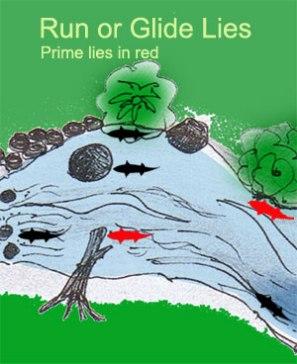 http://www.bishfish.co.nz/webbooks/smttrout/runlies.htm