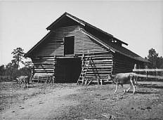 Alabama Great Depression