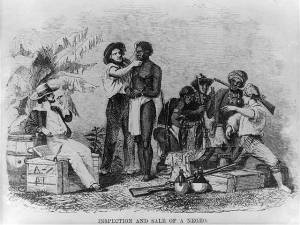 Inspection of a slave for sale. Image from Wikimedia Commons.